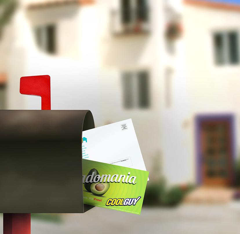 Every Door Direct Mail - EDDM